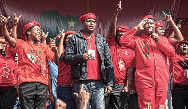 Why the EFF should go back to the ANC